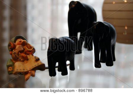 Girl And Elephants
