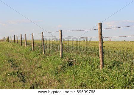 Great Plains Prairie