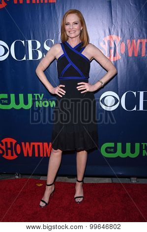 LOS ANGELES - AUG 10:  Marg Helgenberger arrives to the Summer 2015 TCA's - CBS, The CW & Showtime  on August 10, 2015 in West Hollywood, CA