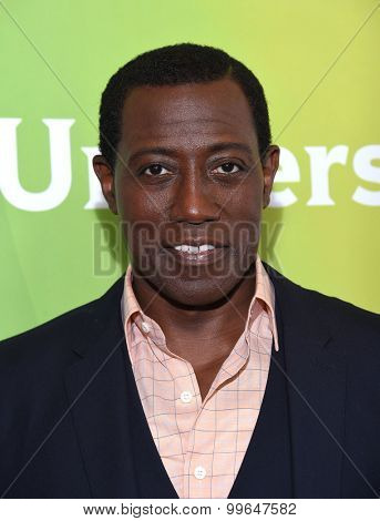LOS ANGELES - AUG 13:  Wesley Snipes arrives to the Summer 2015 TCA's - NBCUniversal  on August 13, 2015 in Hollywood, CA