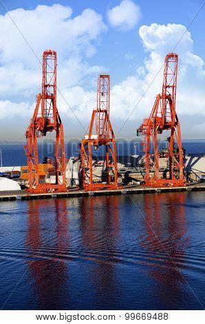 Shippig Cranes