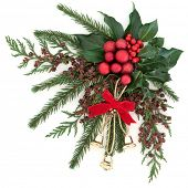 Christmas flora with gold bells and red bauble decorations with holly, ivy and winter greenery over white background. poster