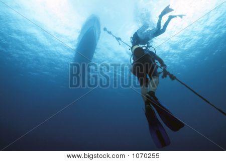 Ascending Divers