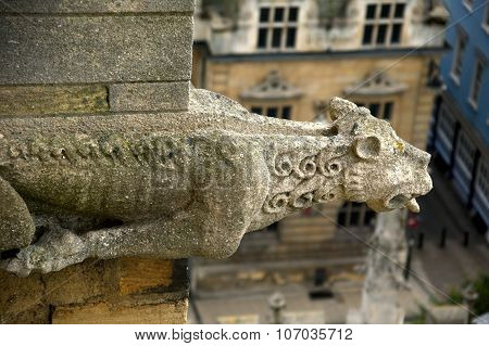 Gargoyle St Mary The Virgin in Oxford