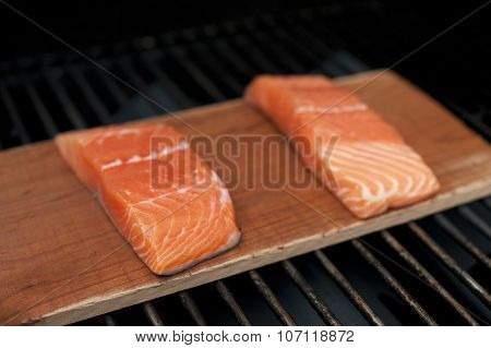 Raw Salmon on Plank