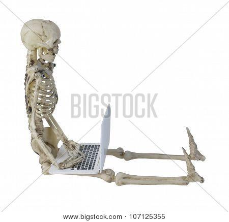 Skeleton Using Laptop