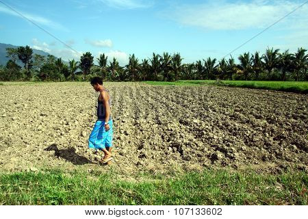 farmer walks past a dried up rice field