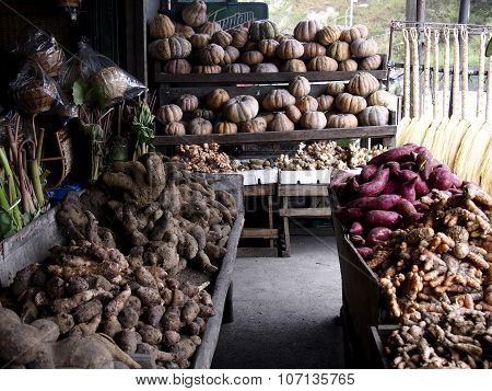 An assortment of different root crops and vegetables