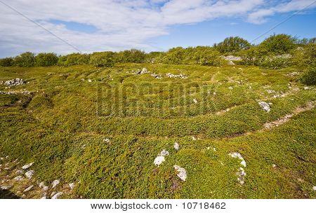 Prehistoric maze on Greater Zayatsky island