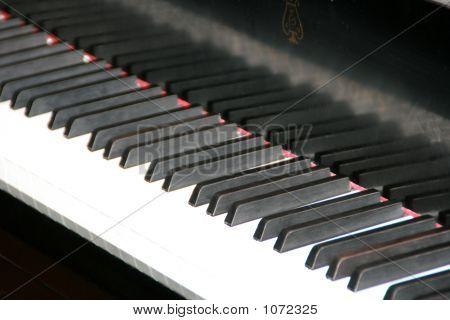 Keyboard4897