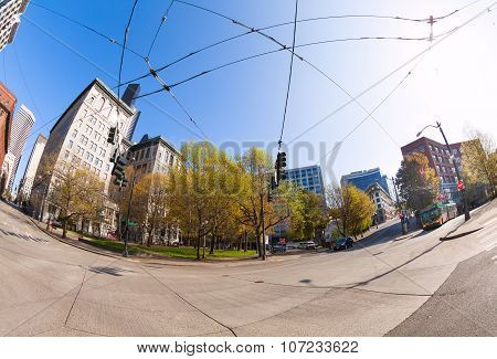 Fisheye view of Seattle city during summer time