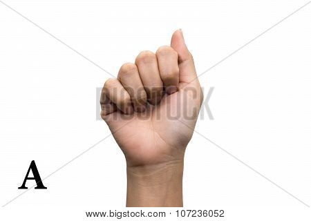 Finger Spelling the Alphabet in American Sign Language (ASL). Letter A