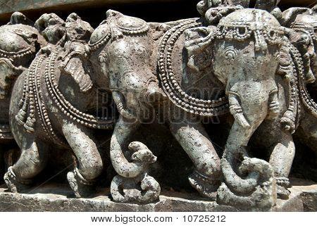 Indian Elephants!