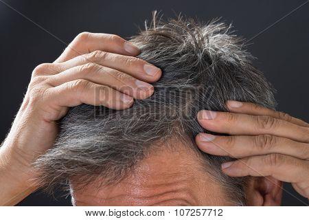 Man Examining His White Hair