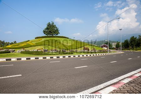 Roundabout Whit Tree