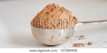 cocoa powder isolated on white background close up