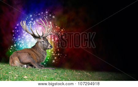 Stag Party Background Banner