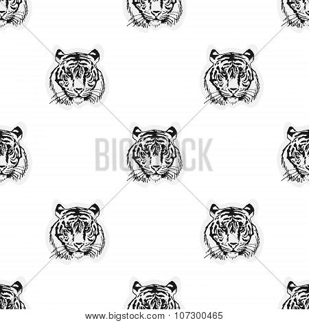 Seamless pattern from the muzzle of the tiger