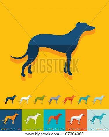 Flat design. greyhound