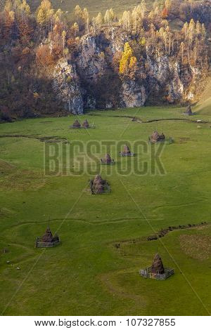 Romanian Fields
