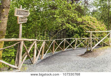 Troldhaugen. The Path To The Lake, Where Is Located The Manor Of Edvard Grieg.