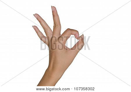 Human Hand Gesture.everything Is Allright.