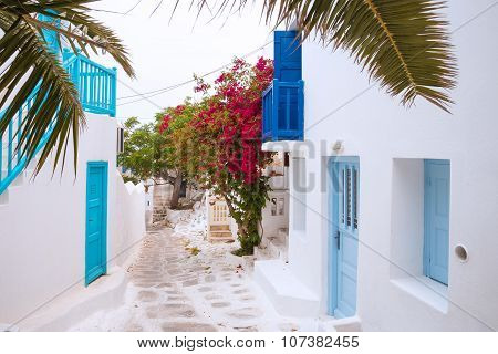 Streetview of Mykonos with palm leaves, Greece