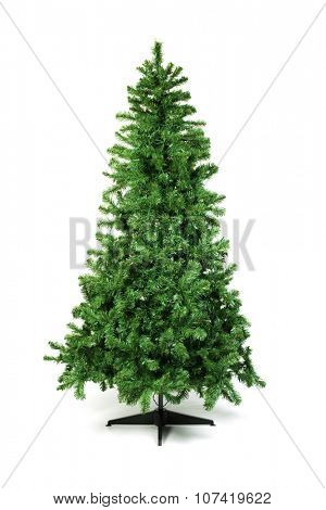 Unadorned Christmas tree isolated on white