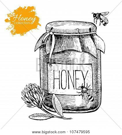 Vector Honey Vintage Illustration. Hand Drawn.