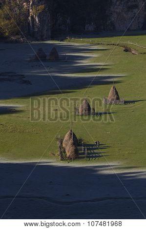 Frozen Haystacks
