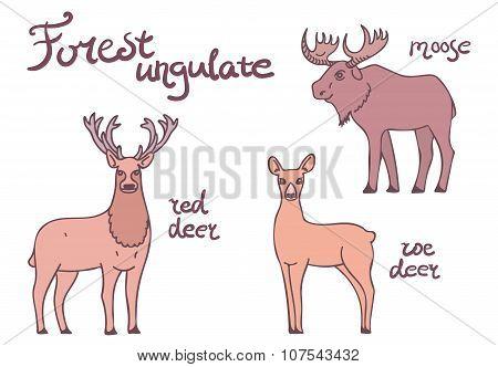 Forest ungulate animals set.