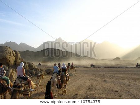 Travel Through Desert