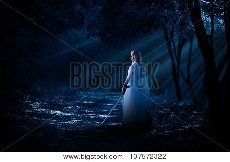 Young elven girl with sword in night forest poster