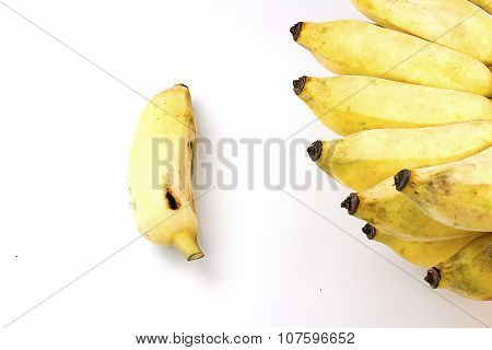 Pisang Awak banana Kluai Nam Wa Cultivate banana on white background poster