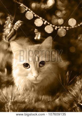 Cat among the Christmas decorations