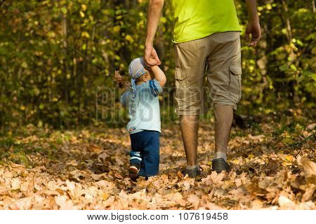 Baby Learning To Walk In The Autumn Forest