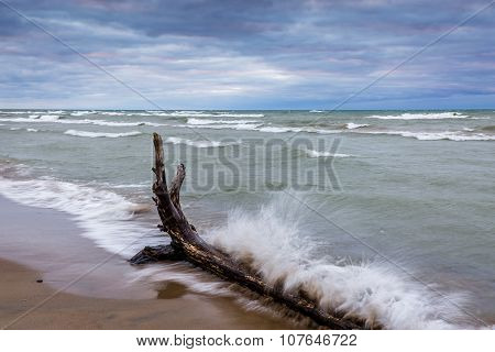 Waves Crashing Against Driftwood