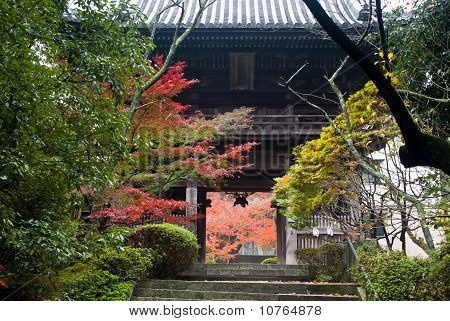 Entrance To A Japanese Temple Showing Colorful Fall Foliage