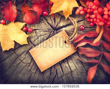 Autumn Background with blank greeting card and colourful leaves over wood. Thanksgiving wooden table decorated with bright autumn leaves. Holiday Table setting with invitation blank card