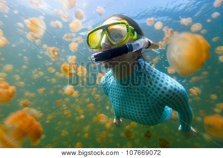 Underwater photo of tourist woman snorkeling with endemic golden jellyfish in lake at Palau. Snorkeling in Jellyfish Lake is a popular activity for tourists to Palau. poster