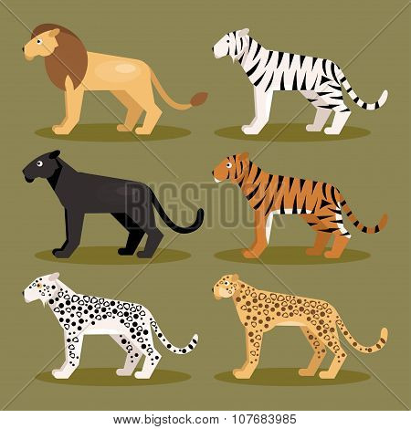Collection of isolated predator felines on a green background poster