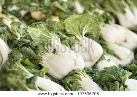Baby bok choy for sale at an outdoor market.