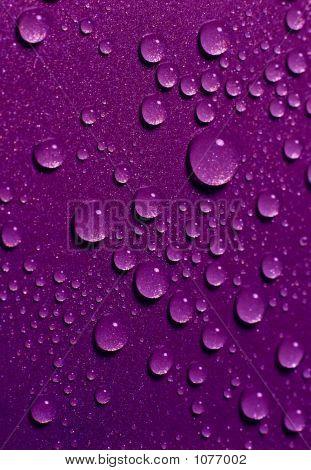 Water Drops 52