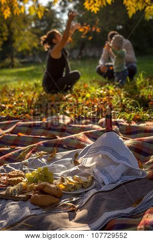 Having Picnic With Family In The Park