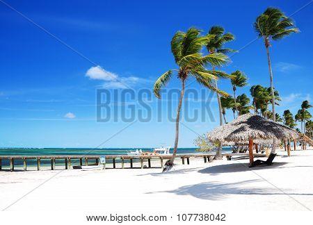 Sandy Tropical Beach In Punta Cana, Bavaro