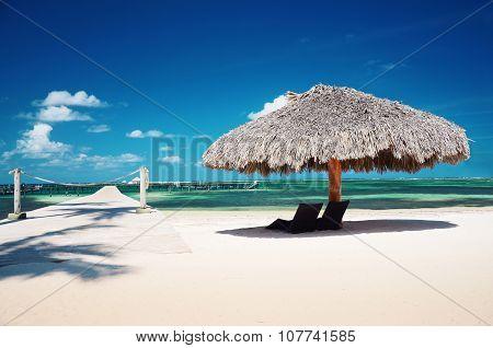 Landscape Of Paradise Tropical Beach