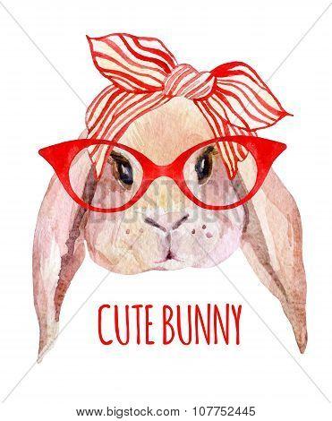 Rabbit Head In Glasses