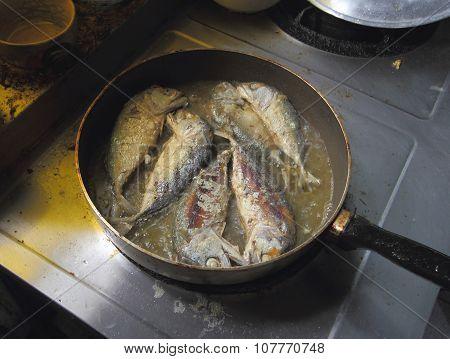 Fried Mackerel In Frying Pan