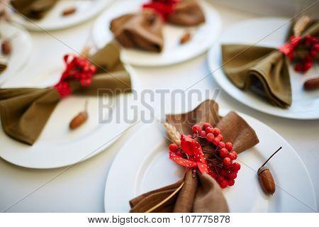 Ripe ashberries, napkin, acorn on plate