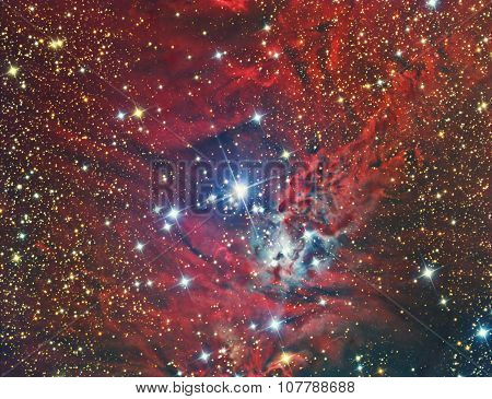 NGC 2264 Christmas Tree Cluster and Nebula